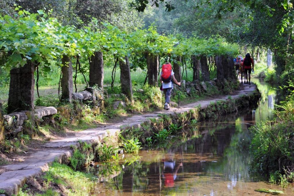 Landschaft auf dem portugiesischen Jakobsweg
